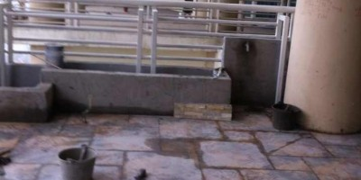 天鹅湖花园装修贴砖效果图